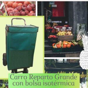 carro reparto con bolsa isotermica, carro con bolsa, carro bolsa isotermica,