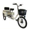 triciclo gea go reparto de ultimamilla y transporte de personas